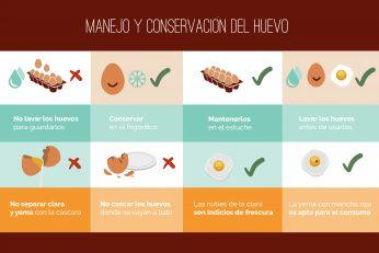 Manejo y conservación del huevo